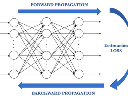 Cómo se entrena una red neuronal